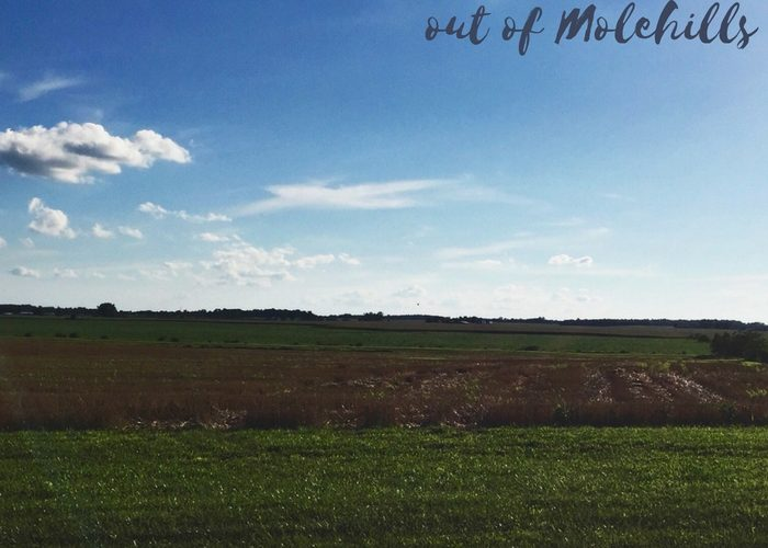 Making Mountains out of Molehills | #write31days