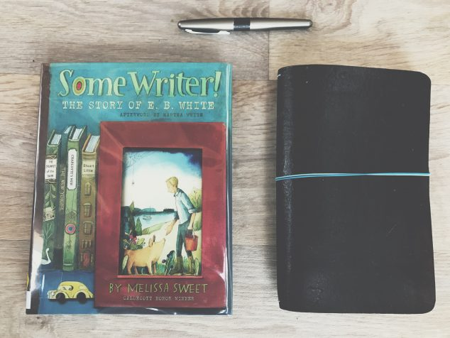 Some Writer! Notes on a biography of E. B. White