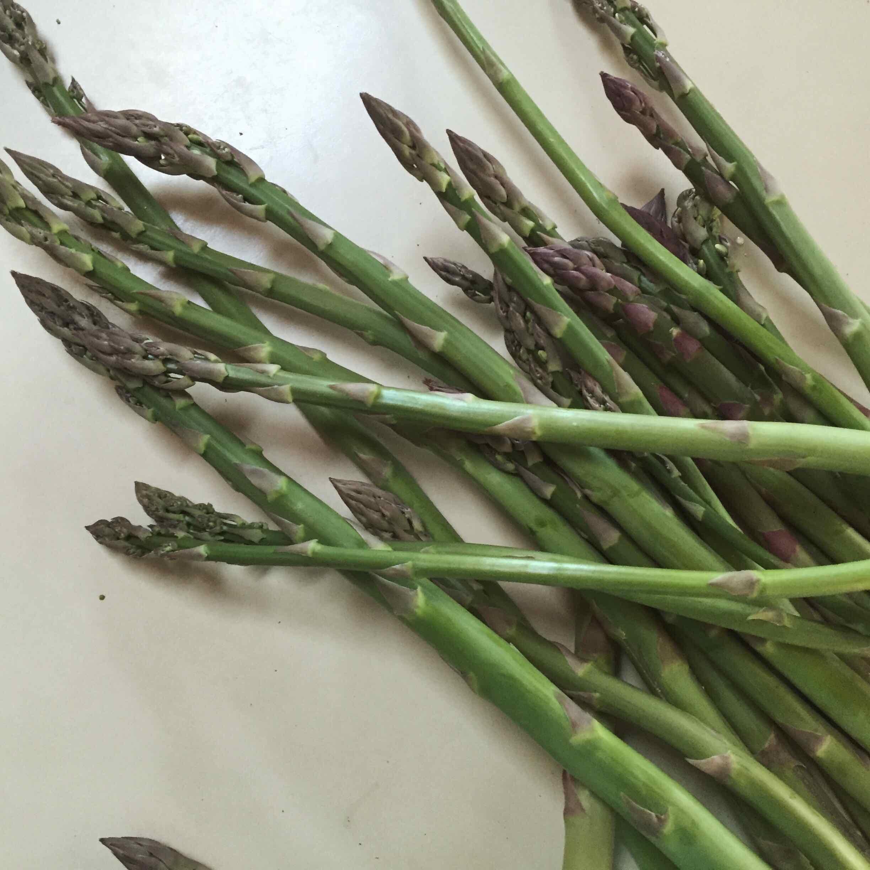 kitchen garden asparagus